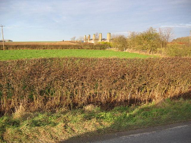 Farmland at SE972502