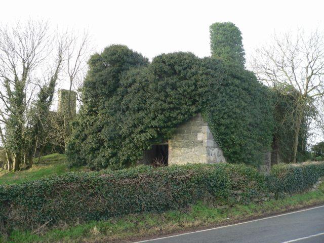 The Ruins of Gwyndy, Llandrygan, Anglesey.