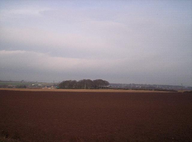 Newbigging Farm and Fields