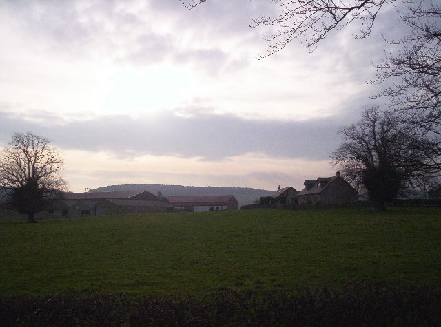 Old Montrose Farm