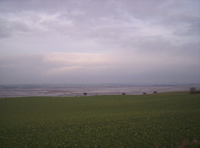 Montrose Basin and Fields