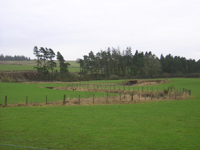 Ardoch Burn Meanders