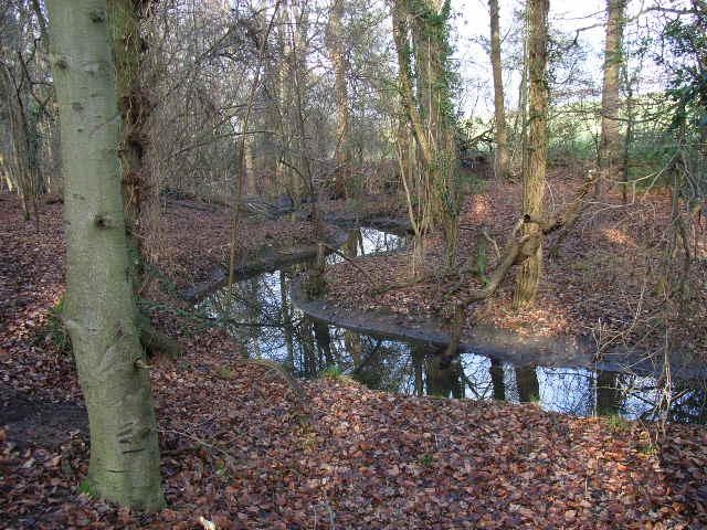 The stream just below Darkhole Bridge
