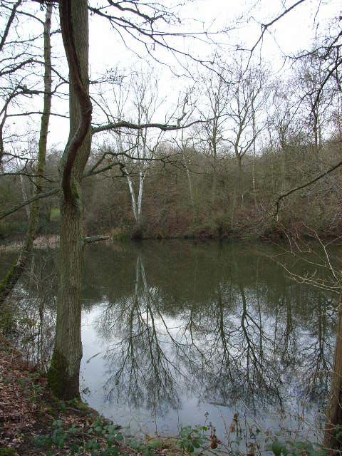 Pickleherring Pond, Windsor Great Park