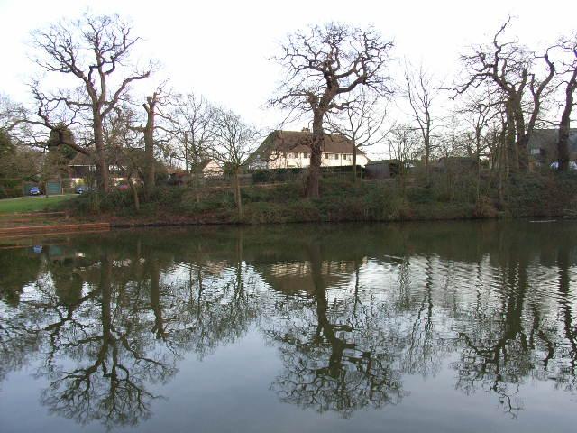 Prince Consort Pond, Windsor Great Park