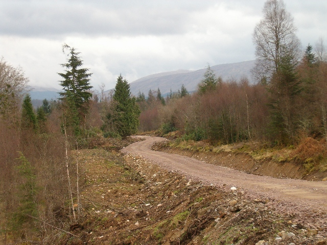 New forestry road in Glen Aray