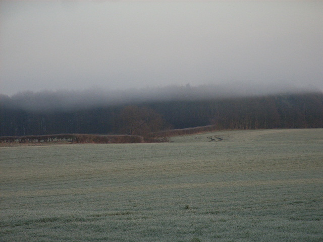 Farmland east of Ruscombe