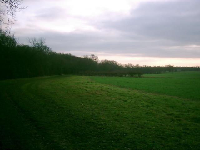 Open land near Long Grove Plantation