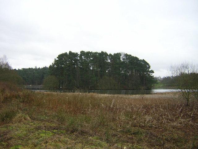 Island in Lanark Loch