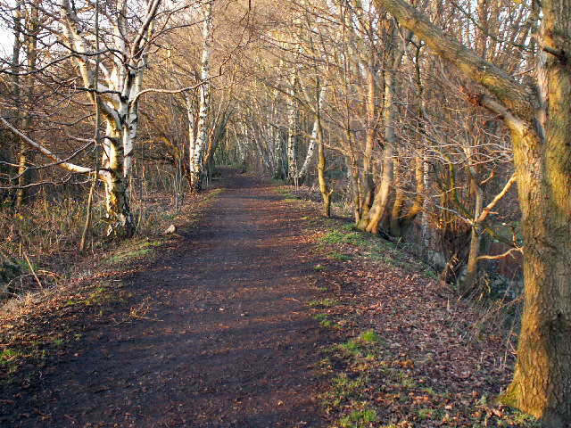 The Harborne Walkway