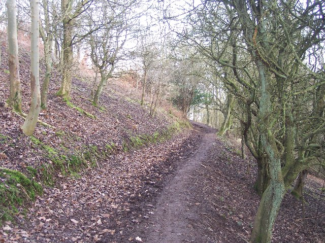 Path from Pink Cottage to Shadybank Common