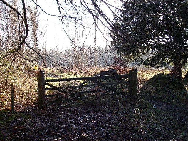 Yewtree Gate, Rewell Wood