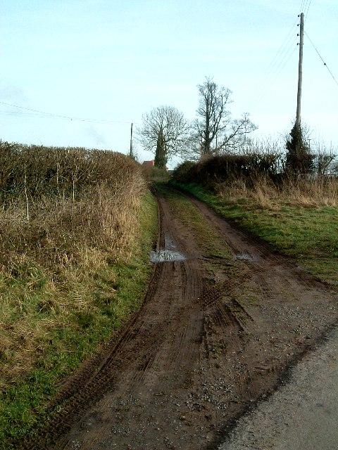 Track to Baxterley Hall Farm