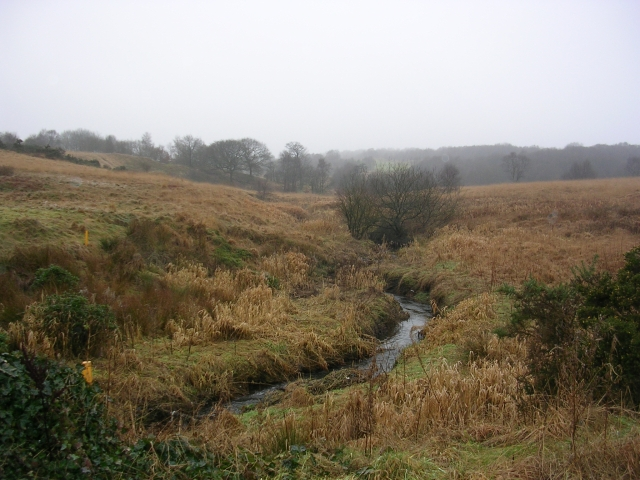 Trub Brook