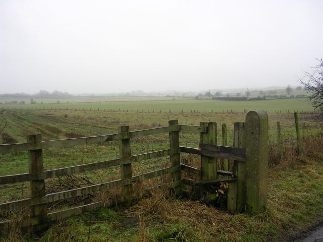 Unsworth Moss
