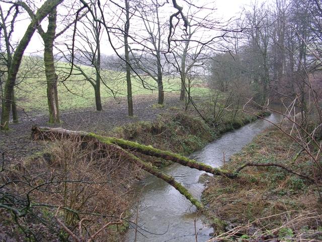 Hollins Brook