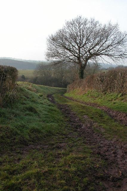 Green lane near Osbaston