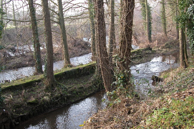 Remains of an old weir or mill race