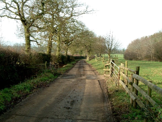 Lane to Kimberley Hall Farm