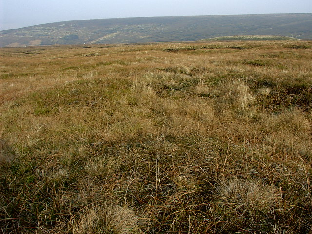 Harrop Moss