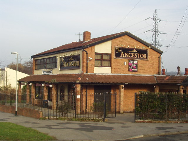 The Ancestor, Armley Ridge Road, Leeds