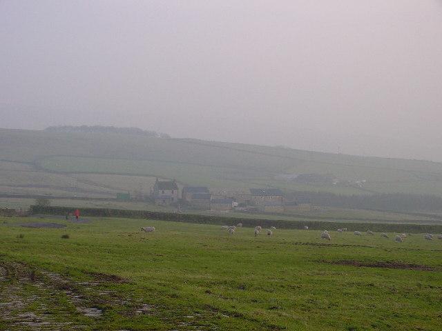 Pasture Pasture