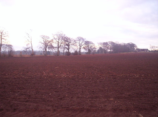Ploughed Field looking Towards a Cottage