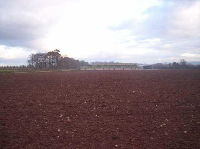 Field and Brathinch Farm
