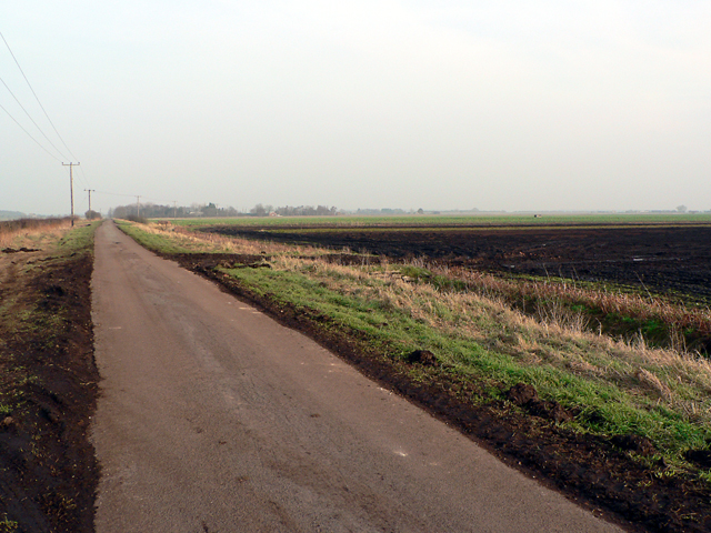 Heighington Fen