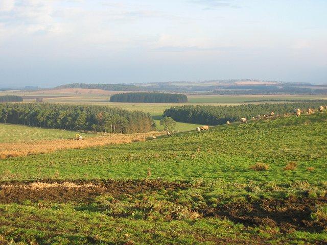 Middleton Moor.