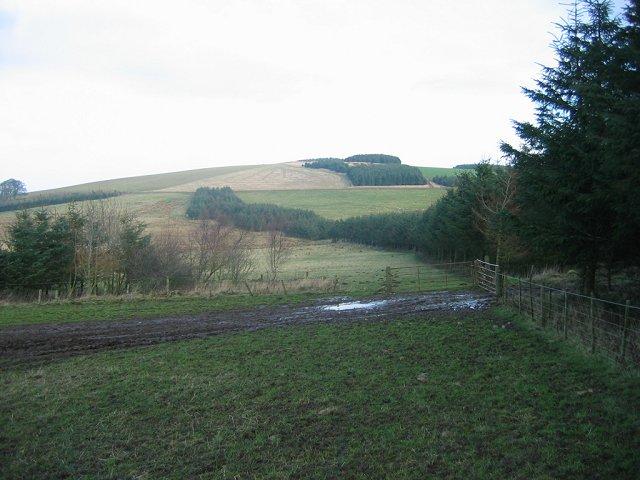 Fala Hill