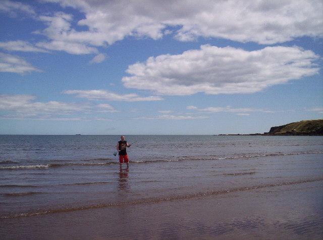 Corbie End of Lunan Bay