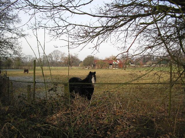 Farm on Alban Way, Hatfield.