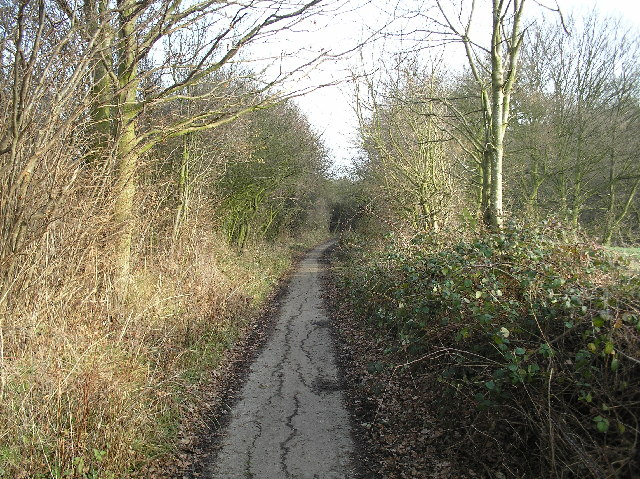 Dellsome Lane, Welham Green