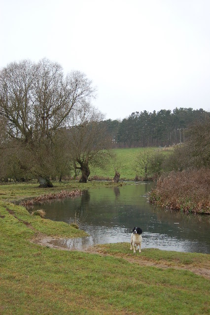 River Coln between Bibury and Coln st Aldwyn