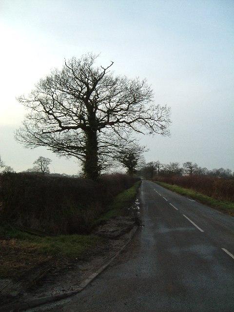 Pinwall Lane