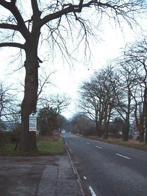 The Bodnets, Plantation Lane
