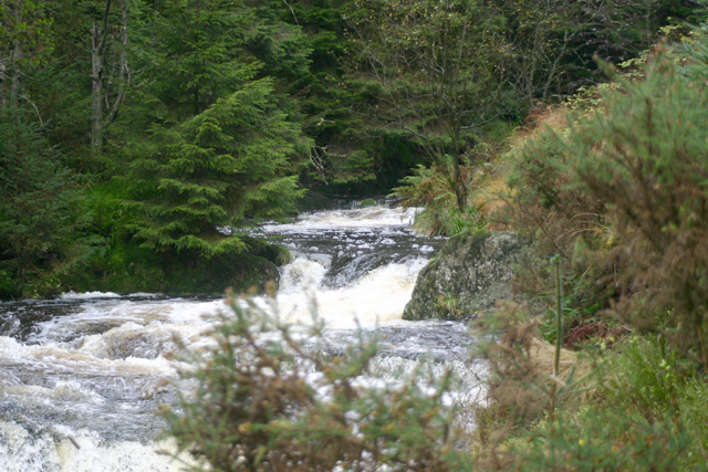 River Severn / Afon Hafren