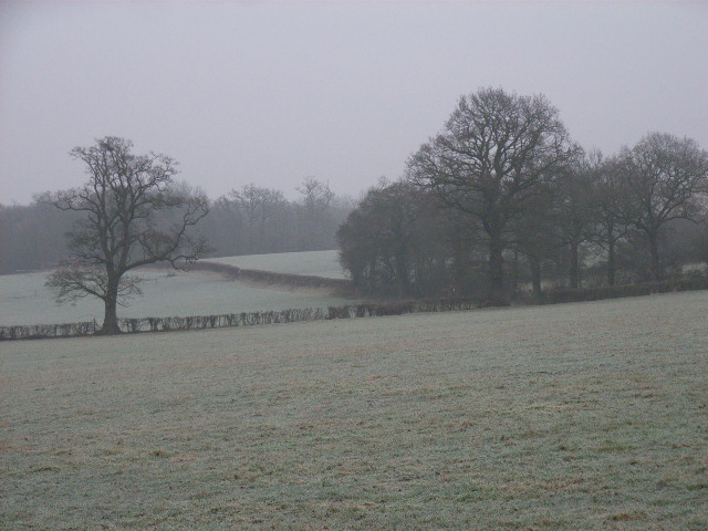 Farmland near Spencer's Wood