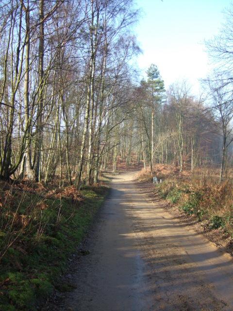 Wolvens Lane