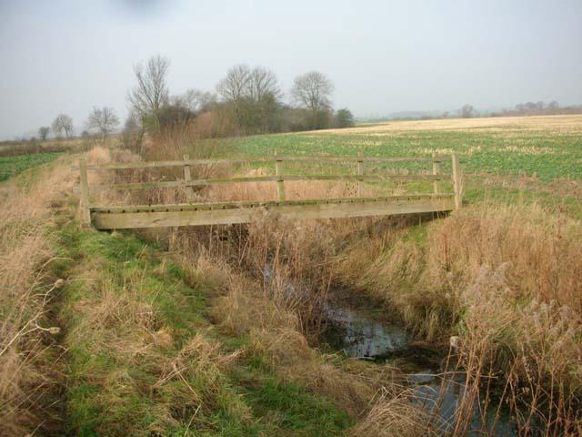 Thorpe Brook
