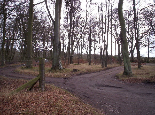 Car Park for West Woods of Ethie