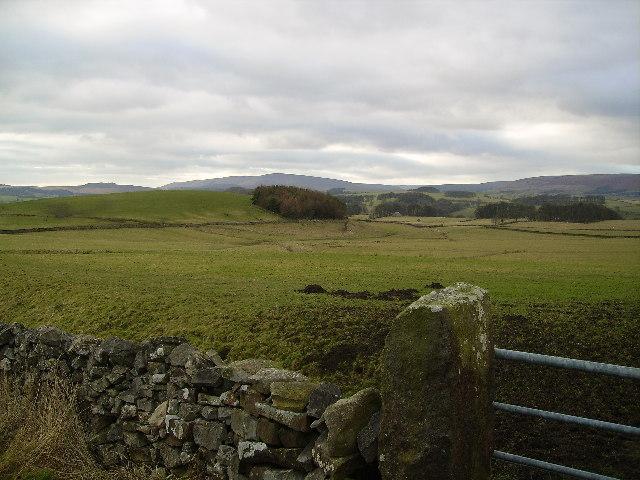 Near Langcliff Cross