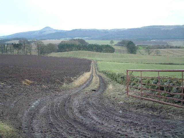 Farm track towards Strathmiglo