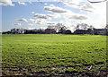 TQ8860 : Parsonage Farm, Bredgar by Penny Mayes