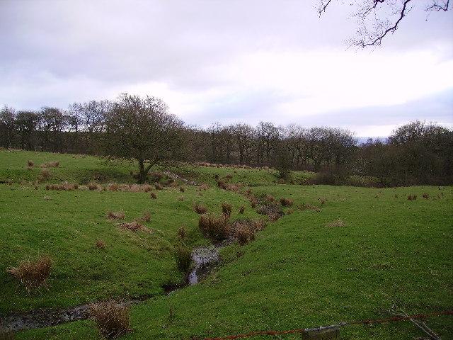 Beck near Hagg Clough