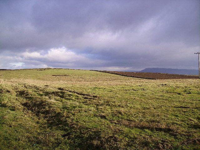 From Newton Fell Road