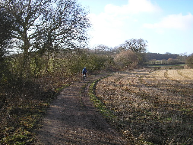 Hawkshead Wood, North Mymms.