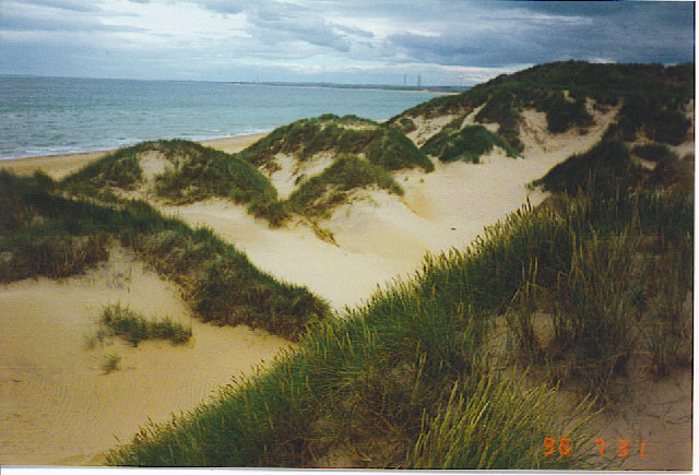 Looking South over the Dunes at Rattray Head.