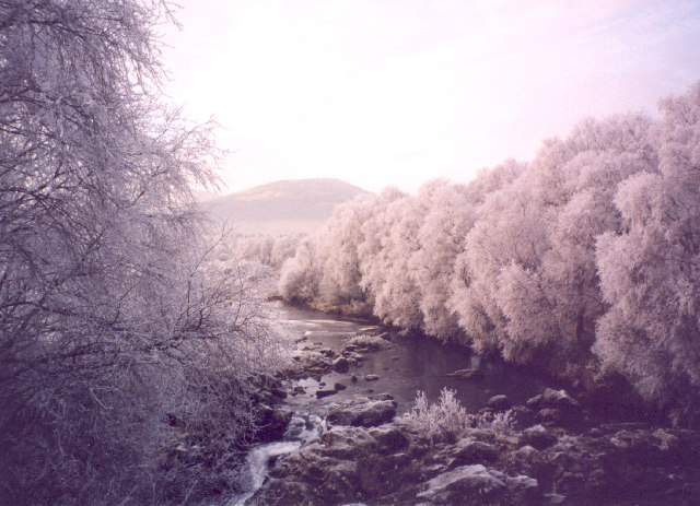 Frosted trees in Strath Fillan